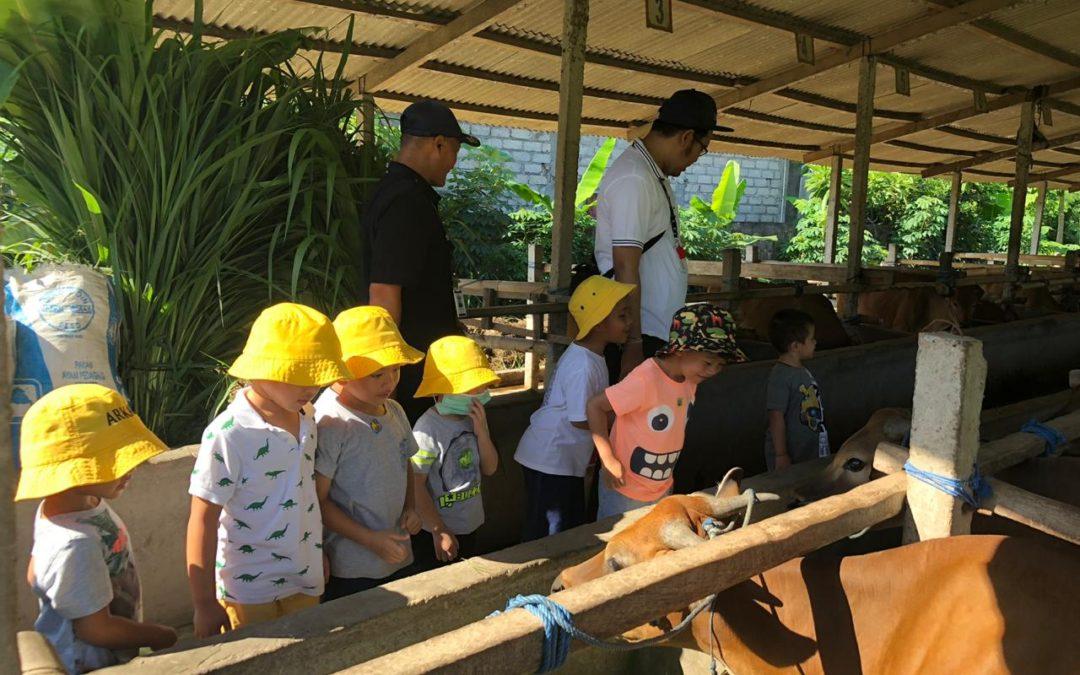 Playgroup Trip to Lunas Lanus Barn