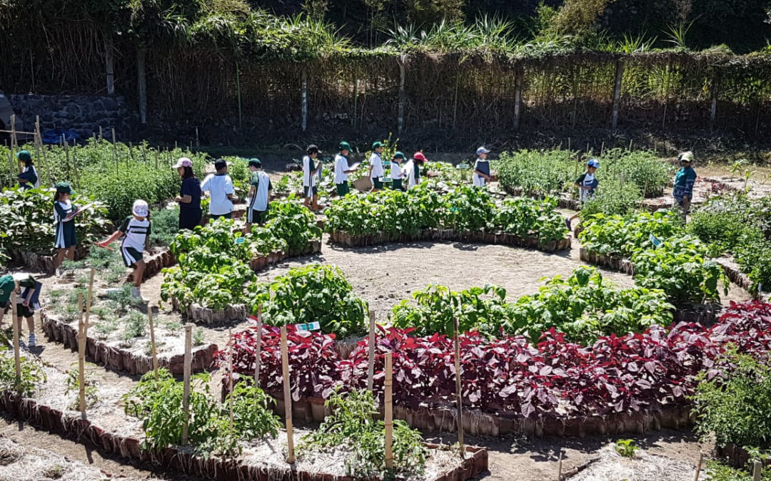 Class 3 Visited the Dyatmika Community Garden