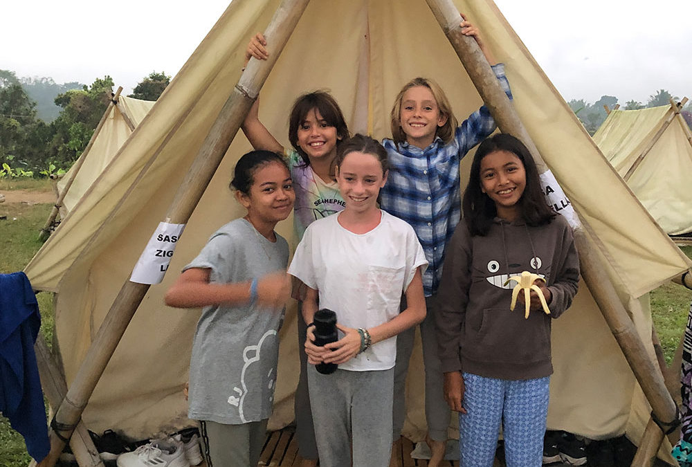 Class 6 Camp