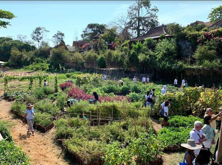 Your Community Garden Needs You!