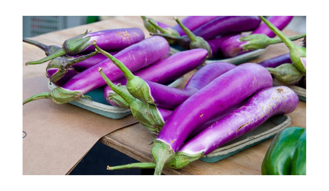 Dyatmika Community Garden – Recipe of the Week – 1 November