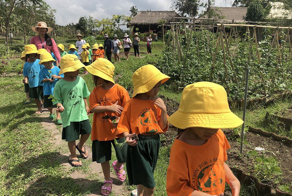 TK Field Trip to Desa Visesa Ubud