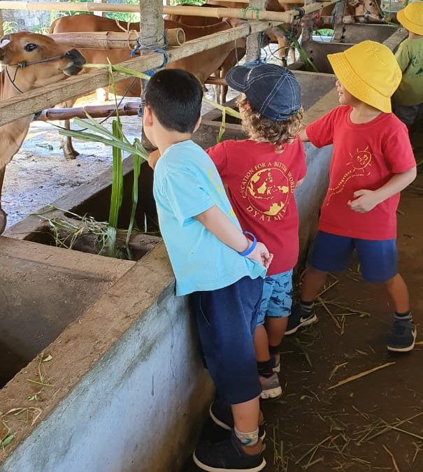 Playgroup Visit: The Cow Barn